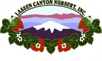 Lassen Canyon is proud to sponsor the North American Strawberry Growers Association.